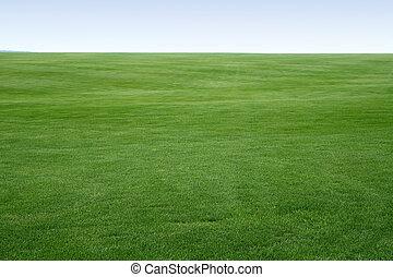 ändlös, gräsmatta