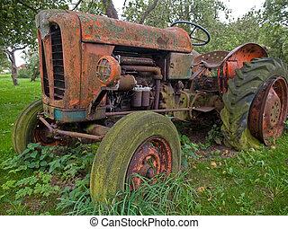 årgång, gammal, traktor