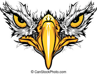 örn, ögon, vektor, illustration, näbb