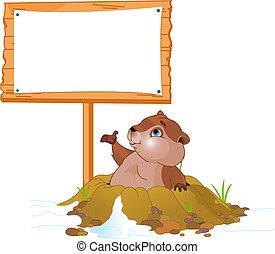 affischtavla, groundhog, dag