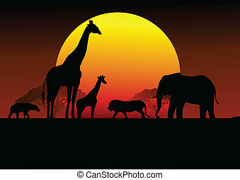 afrika, safari, silhuett