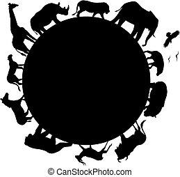 afrika, silhuett, djur