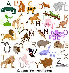 alfabet, djur
