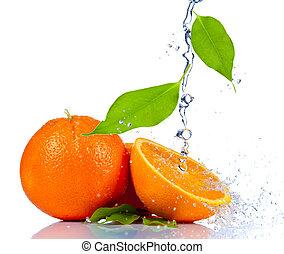 apelsin, frisk, plaska, vatten