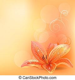 apelsin, pastell, lilja, bakgrund, lätt