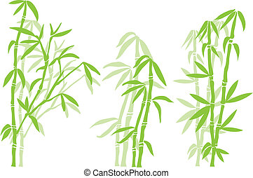 bambu träd