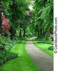 bana, trädgård