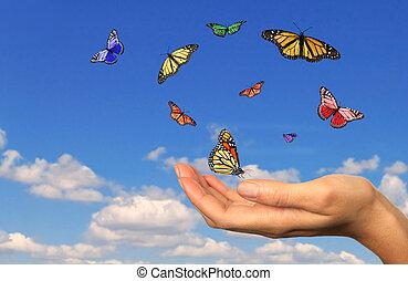 befriad, hålla lämna, buttterflies