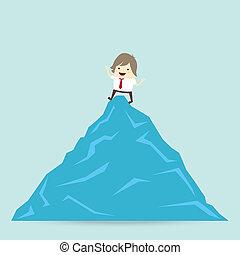 begrepp, affär, framgång, vinna, topp uppe, affärsman, fjäll