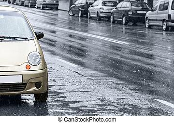 bilar, väg, våt