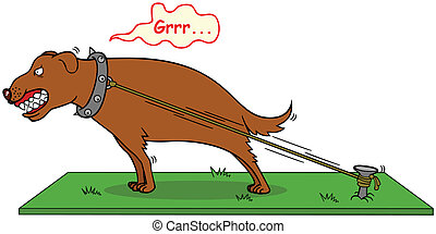 bita, aldrig, skall hund