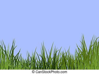 blå, gräs, sky, &