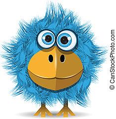 blå, rolig, fågel