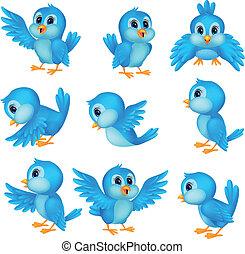 blå, söt, fågel, tecknad film