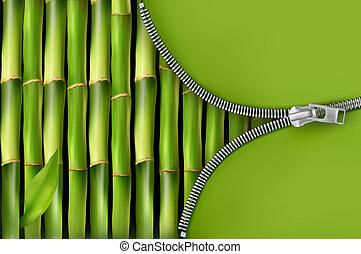 blixtlås, bakgrund, öppna, bambu