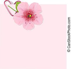 blomma, körsbär, brev