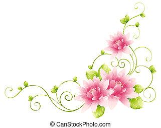 blomma, vinstockar