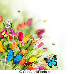 blomningen, fjäder, fjärilar, vacker