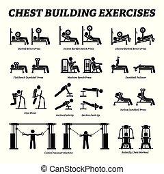 byggnad, figur, pictograms., bröstkorg, käpp, träningen, muskel