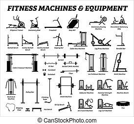 byggnad, sätta, cardio, equipments, maskiner, gym., fitness, muskel