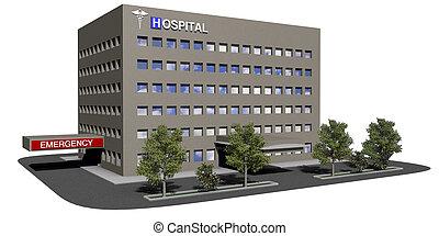 byggnad, sjukhus, vit fond