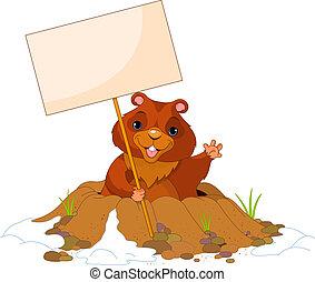 dag, affischtavla, groundhog