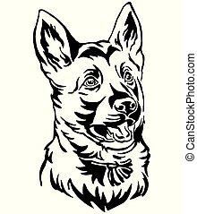 dekorativ, fåraherde, tysk, hund, illustration, vektor, stående, valp