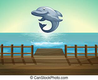 delfin, hav, hoppning, hamn