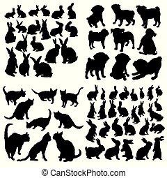 djur, hund, cirkel, katt, kanin, sätta, ikonen