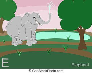 e, djur, alfabet, elefant