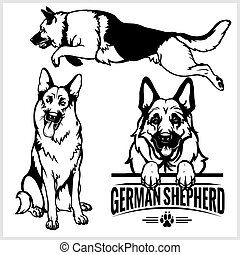 fåraherde, sätta, tysk, -, hund, illustration, isolerat, vektor, bakgrund, vit