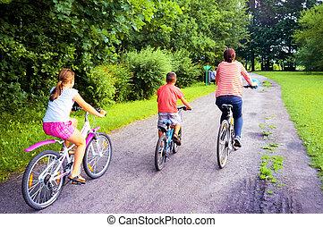 fjäder, bicycles, parkera, familj