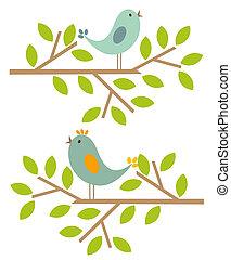 fjäder, fåglar