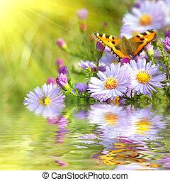 fjäril, blomningen, reflexion, två