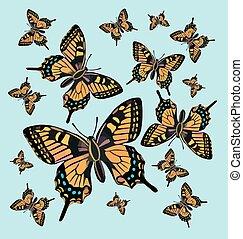 fjäril, mönster, bakgrund