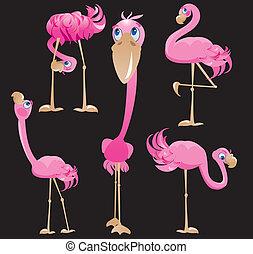 flamingor, cartoons