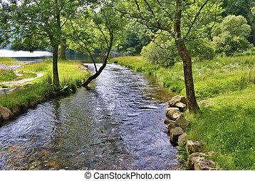 flod, scen, fredlig