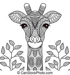 giraff, kolorit, sida