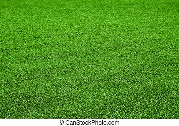 gräsmatta, struktur