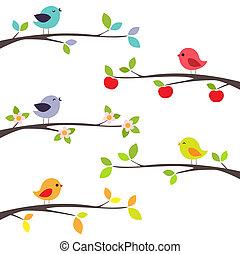 grenverk, fåglar