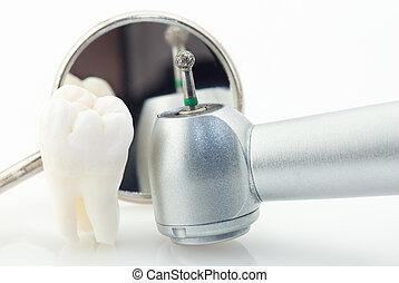 hälsosam, begrepp, tänder