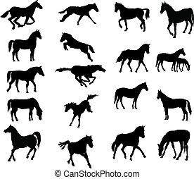 hästar, vector-silhouettes, olika