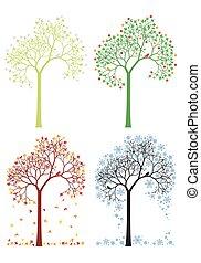 höst, vinter, träd, fjäder, sommar