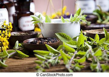 herbal, naturlig, tonen, medicin, färgrik