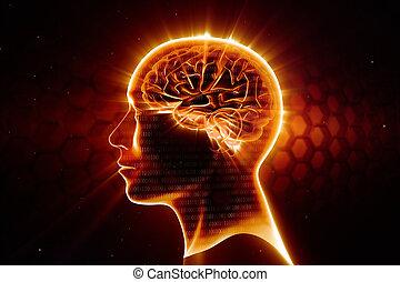 hjärna, huvud, man, lysande