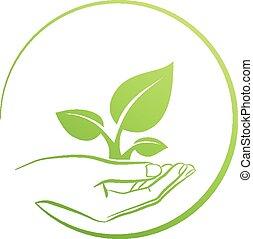 holdingen, växt, logo, hand, begrepp