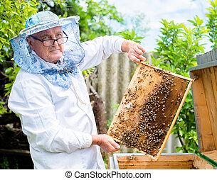 honung, ram, biodlare, holdingen
