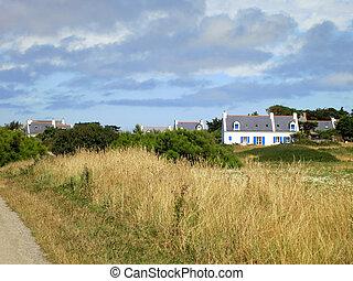 hus, bretagne, countryside., fransk, förtjusande, fält, france., vit
