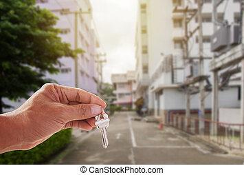 hus, holdingen, stämm, bakgrund, hand