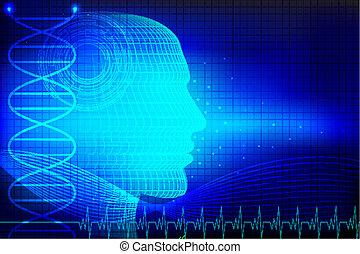huvud, mänsklig, medicinsk, bakgrund